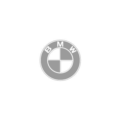 BMW_G