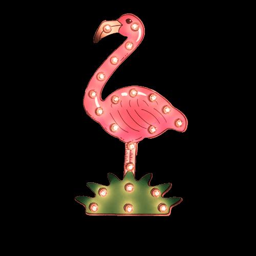 kontakt_flamingo-s