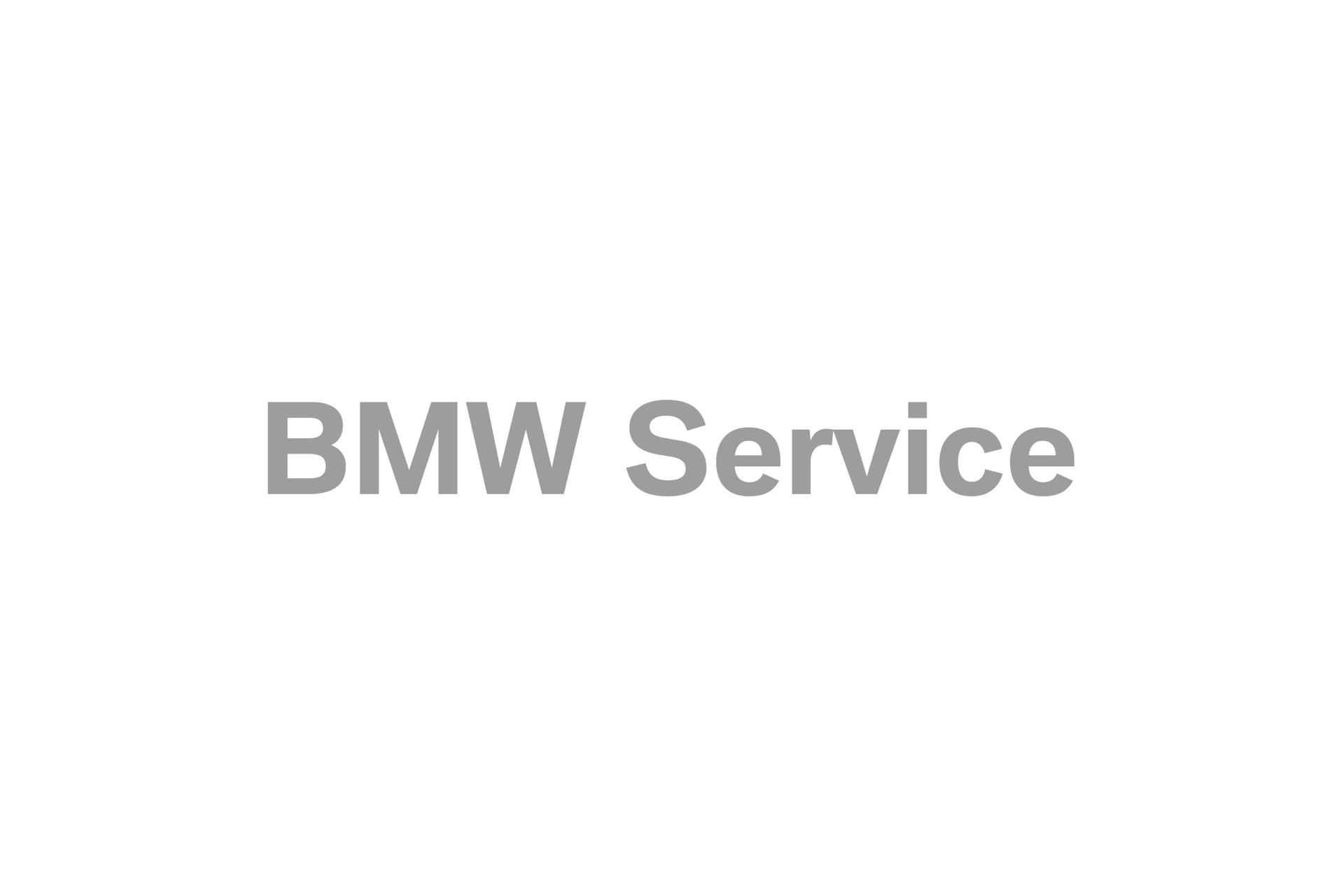 PRO_BMW_Service_Logo